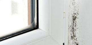 5 συμβουλές για να αντιμετωπίσετε προβλήματα από υγρασία και μούχλα στο σπίτι σας